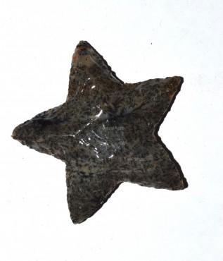 Polished Star Arrowheads